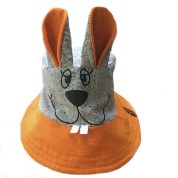панама заяц